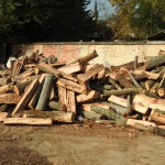 Drva, Stovariste Prezent